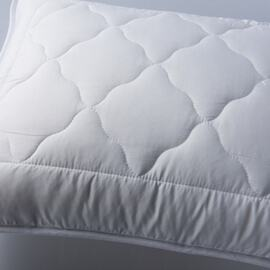 European Pillow Protector (pack of 2)